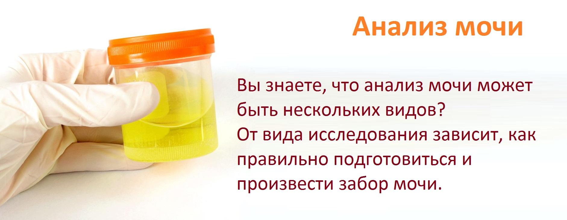 Проведение платных анализов мочи и крови в москве сколько берут крови из вены на анализ